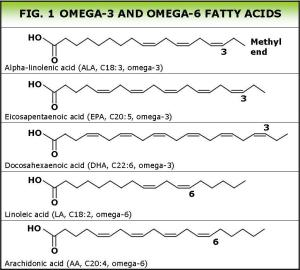 Insane Medicine - Omega fatty acids