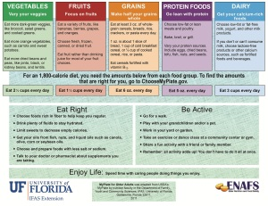 Insane Medicine - Florida state food panel recommendations mirroring 'My Plate'