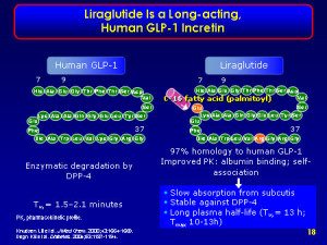 Liraglutide has effects on a number of metabolic systems